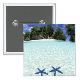Sea stars, Rock Islands, Palau 2 Inch Square Button