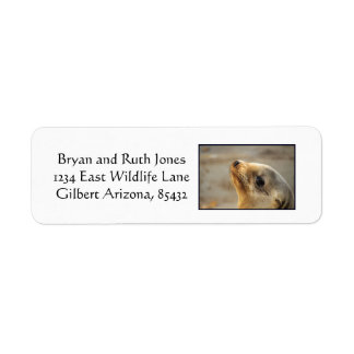 Sea that lion of a face return address label