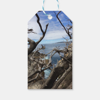 Sea the Beauty Pack Of Gift Tags
