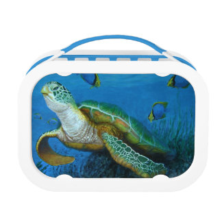 Sea Turtle and Blue Tang Fishes Lunch Box