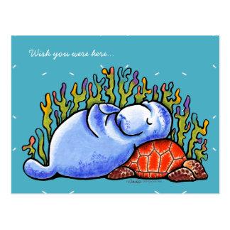 Sea Turtle and Manatee Postcard