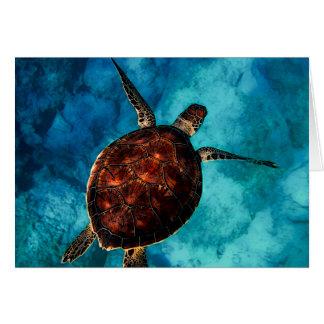 Sea Turtle Beauty Card
