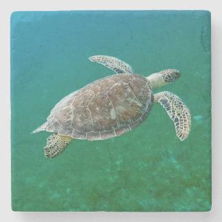 Sea Turtle Coaster