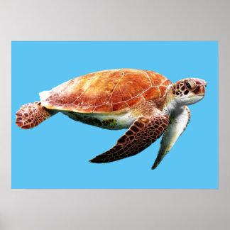 Sea Turtle Custom Color Background Poster