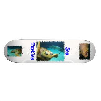 Sea Turtle Design Skateboard