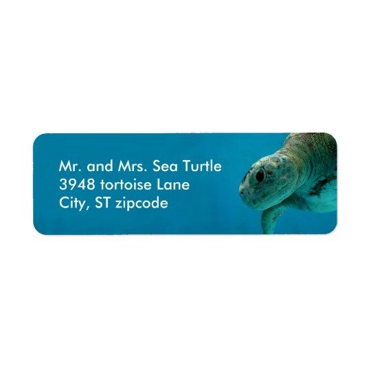sea turtle label return address label