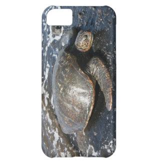 Sea Turtle on Black Sand Beach iPhone 5C Covers