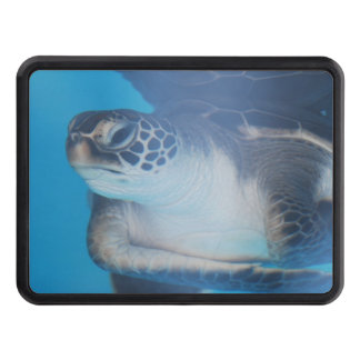 Sea Turtle Tow Hitch Cover