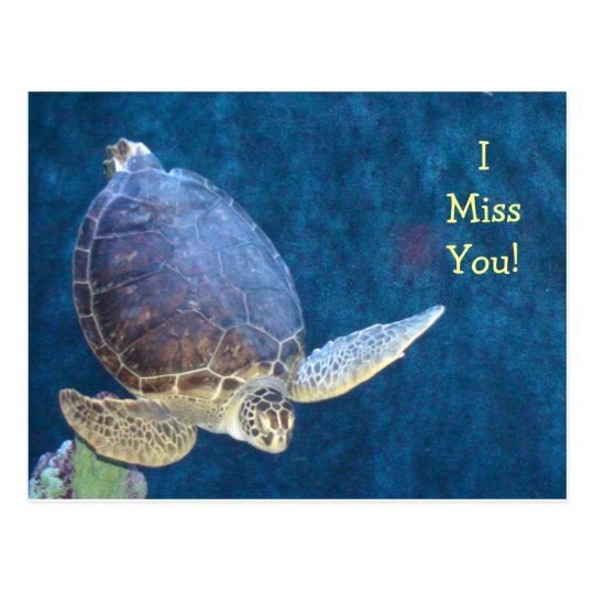 Sea Turtle Post Card (Add your own Text)