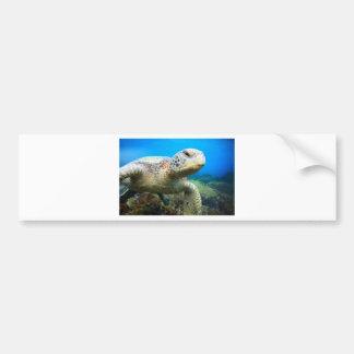 Sea turtle underwater Galapagos Islands Bumper Sticker