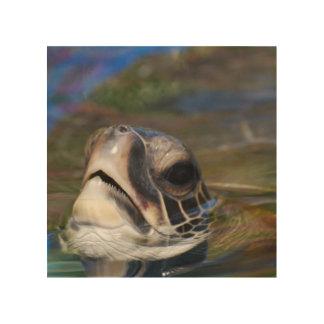 Sea Turtle Wood Prints