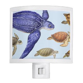 Sea Turtles of the World 1 Nite Lite
