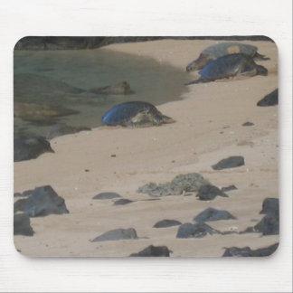 Sea turtles on Kaui's Na Pali coast mousepad