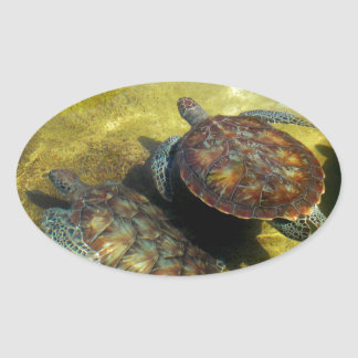 Sea Turtles Oval Sticker