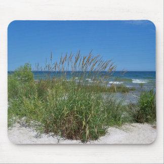 Seagrass Along the Seashore Mouse Pad