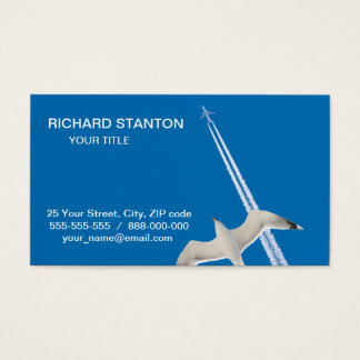 Seagull and airplane business card