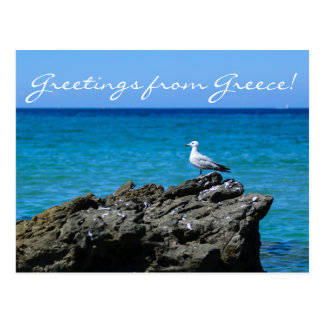 Seagull and sea personalized greeting postcard