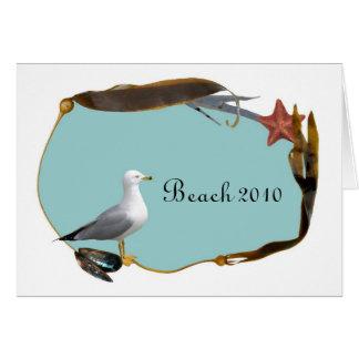 Seagull at Beach Card