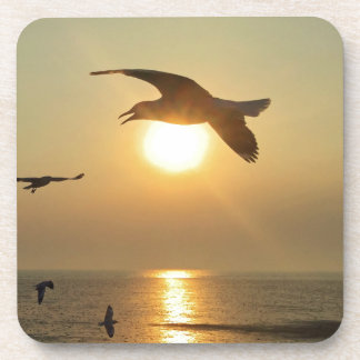 Seagull at Sunset Drink Coasters