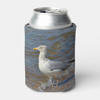Seagull At The Beach Can Cooler