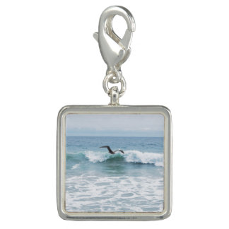 Seagull at the Beach in California Photo Charms