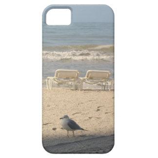 Seagull Beach Ocean iPhone 5 Cell Phone Case