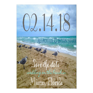 Seagull Beach Save the Date thin Magnet