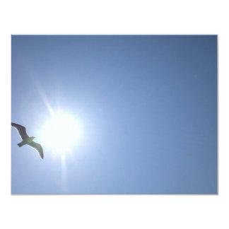 Seagull blue sky card