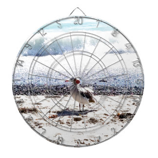 seagull by the ocean on the beach picture dartboard