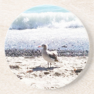 seagull by the ocean on the beach picture drink coasters