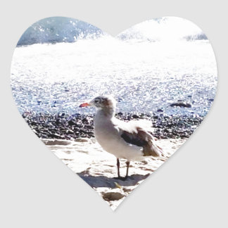 seagull by the ocean on the beach picture heart sticker
