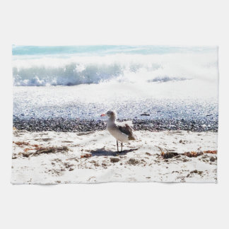 seagull by the ocean on the beach picture towels