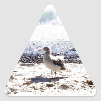 seagull by the ocean on the beach picture triangle sticker