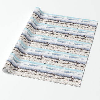 seagull by the ocean on the beach picture wrapping paper