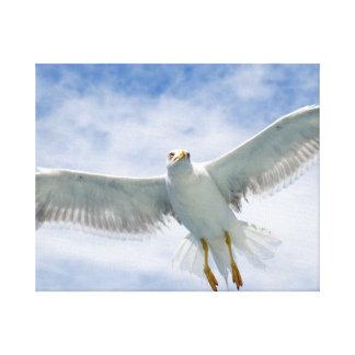 """Seagull"" Canvas"