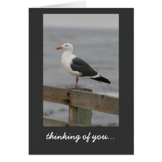 Seagull: Carmel-by-the-Sea Card