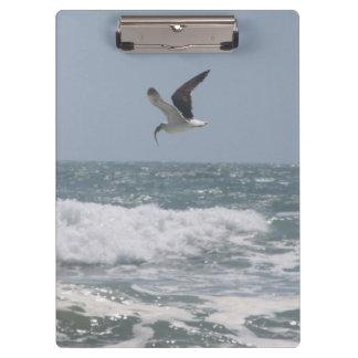 Seagull Clipboard