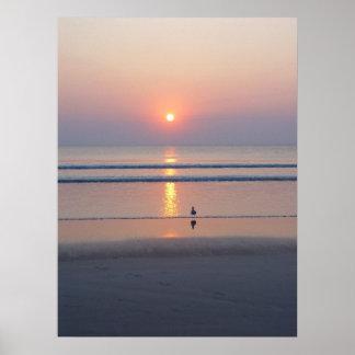 Seagull Daytona Beach FL Ocean Sunrise Poster