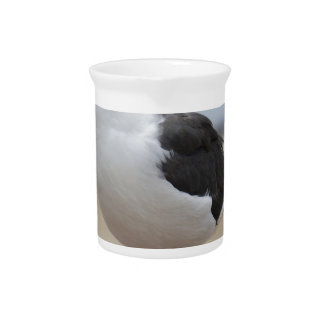 Seagull Drink Pitcher