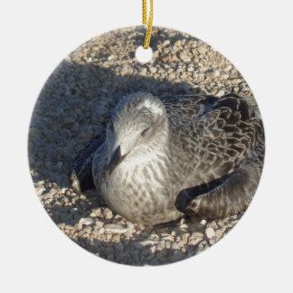 Seagull Enjoying The Sun Summer Photography Round Ceramic Ornament
