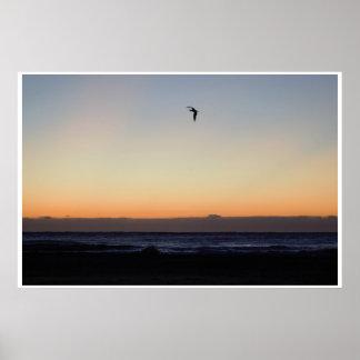 Seagull Flying over Ocean at Sunrise Poster