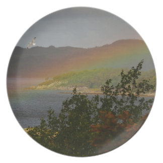 Seagull Flying past a Rainbow in Ardnamurchan Plate