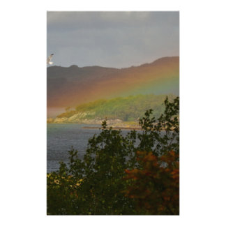 Seagull Flying past a Rainbow in Ardnamurchan Stationery