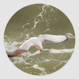 Seagull Gliding Over The Waves Classic Round Sticker