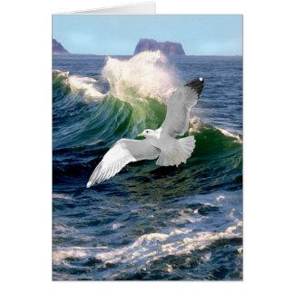 """Seagull"" Greeting Card"