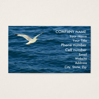 Seagull in Flight over Water Business Card