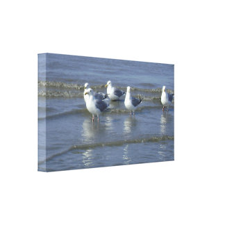 Seagull in the Surf Wrapped Canvas