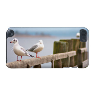 seagull iPod touch 5G cases