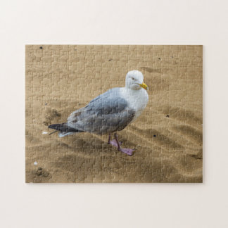 Seagull on a beach photo puzzle