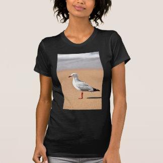 SEAGULL ON BEACH QUEENSLAND AUSTRALIA T-Shirt